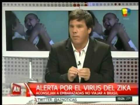 Qué-es-el-virus-zika-Síntomas-y-riesgos